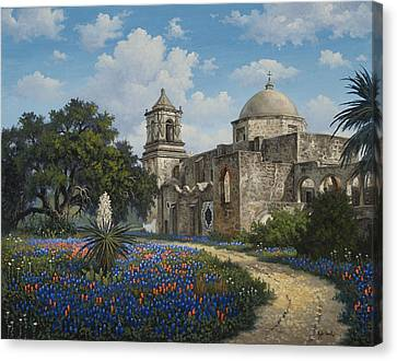 Spring At San Jose Canvas Print