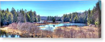 Canvas Print featuring the photograph Spring Scene At The Tobie Trail Bridge by David Patterson