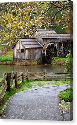 Spring At The Water Mill Canvas Print by Darren Fisher