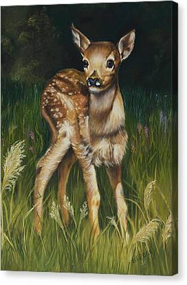 Spring Baby Fawn Canvas Print