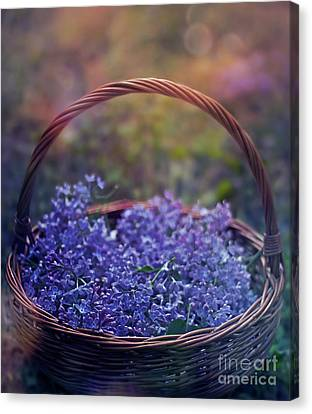 Spring Basket Canvas Print