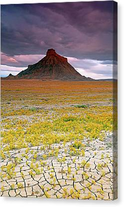 Canvas Print featuring the photograph Spring Bloom At Factory Butte. by Johnny Adolphson