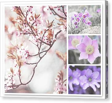 Canvas Print featuring the photograph Spring Bloom Collage 1. Shabby Chic Collection by Jenny Rainbow
