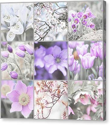 Canvas Print featuring the photograph Spring Bloom Collage. Shabby Chic Collection by Jenny Rainbow