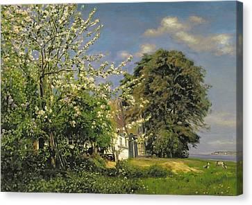 Spring Blossom Canvas Print by Christian Zacho