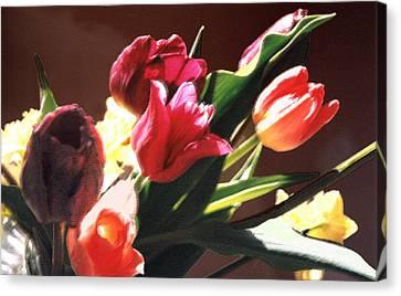 Spring Bouquet Canvas Print by Steve Karol