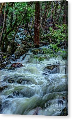 Canvas Print - Spring Bridalveil Creek In Yosemite by Terry Garvin