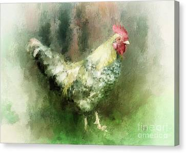 Canvas Print featuring the digital art Spring Chicken by Lois Bryan