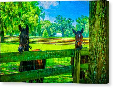 Canvas Print featuring the painting Spring Colts by Louis Ferreira