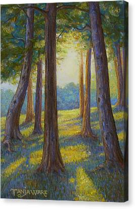 Spring Comes To Indian Point Canvas Print by Tanja Ware