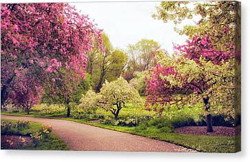 Spring Crescendo Canvas Print by Jessica Jenney