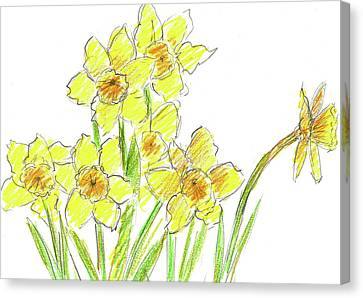 Canvas Print featuring the painting Spring Daffodils by Cathie Richardson