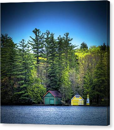 Spring Day At Old Forge Pond Canvas Print by David Patterson