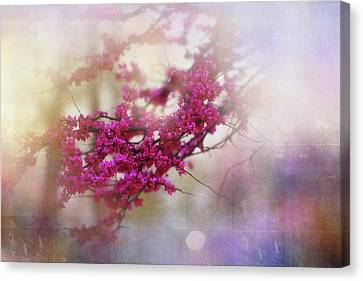 Canvas Print featuring the photograph Spring Dreams II by Toni Hopper