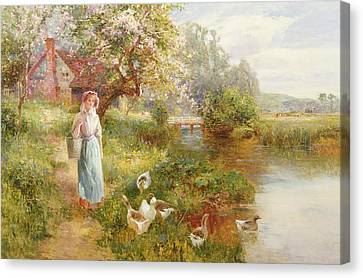 Towpath Canvas Print - Spring by Ernest Walbourn