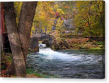 Spring Flow Canvas Print by Marty Koch