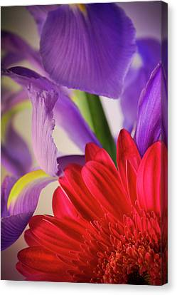 Spring Flowers 001 Canvas Print by Bobby Villapando