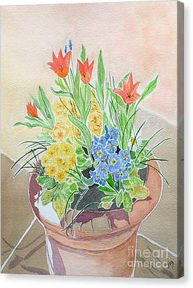 Spring Flowers In Pot Canvas Print by Yvonne Johnstone