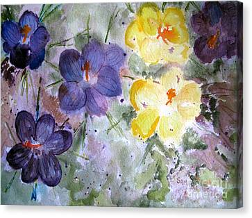Spring Flowers Canvas Print by Sandy McIntire