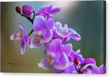 Canvas Print featuring the photograph Spring For You by Marvin Spates