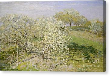 Spring, Fruit Trees In Bloom, 1873 Canvas Print by Claude Monet