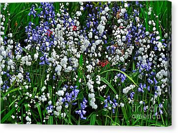Spring Garden Canvas Print by Kaye Menner