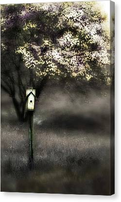Spring  Canvas Print by Gray  Artus