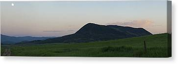 Canvas Print featuring the photograph Spring Green On Elk Montain by Daniel Hebard