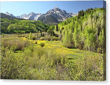 Spring Greens Canvas Print by Eric Glaser