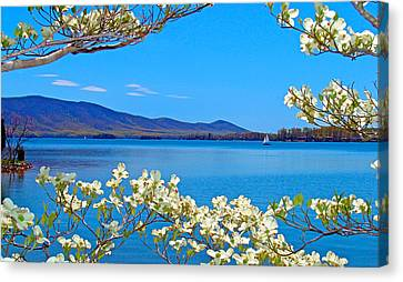 Spring Has Sprung 2 Smith Mountain Lake Canvas Print by The American Shutterbug Society
