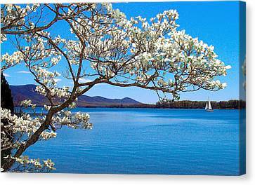 Spring Has Sprung Smith Mountain Lake Canvas Print by The American Shutterbug Society