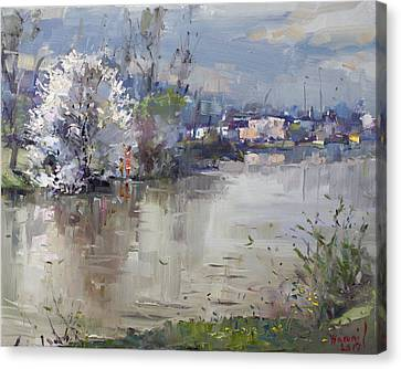 Spring In Hyde Park Canvas Print by Ylli Haruni