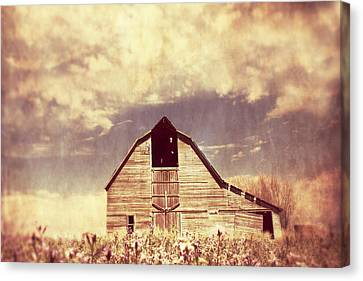 Canvas Print featuring the photograph Spring In Kansas  by Julie Hamilton