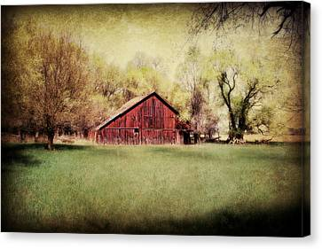 Spring In Nebraska Canvas Print by Julie Hamilton