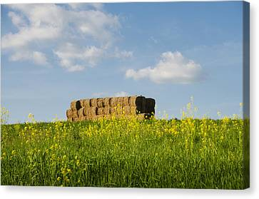 Spring In Pennsylvania Canvas Print by Bill Cannon