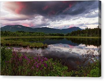 Canvas Print featuring the photograph Spring In The North Woods by Patrick Downey
