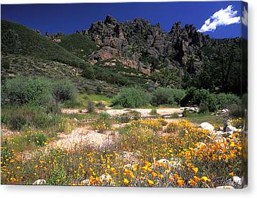 Spring In The Pinnacles Canvas Print by Kathy Yates