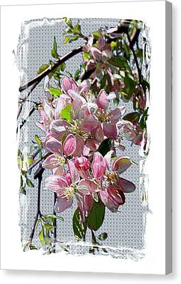 Spring Is Melting Away Canvas Print by Carol Groenen