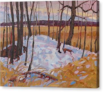 Spring Island Canvas Print by Phil Chadwick
