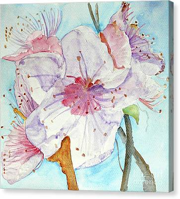 Canvas Print featuring the painting Spring by Jasna Dragun