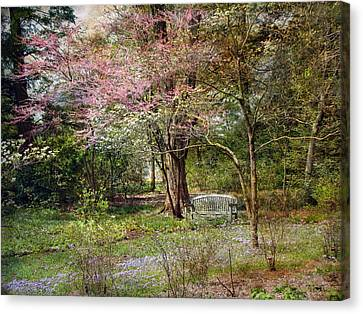 Canvas Print featuring the photograph Spring by John Rivera