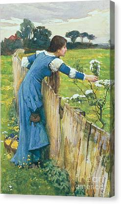 Spring Canvas Print by John William Waterhouse