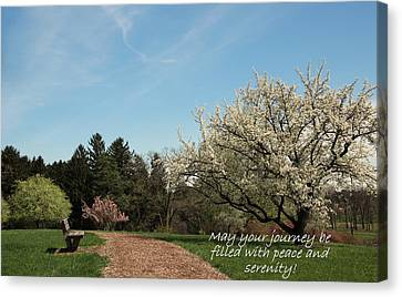 Spring Journey Canvas Print by Rosanne Jordan