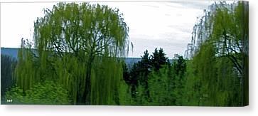 Granger Of Spring Life Canvas Print - Spring Landscape Willows by Debra     Vatalaro