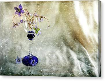 Spring Loveliness Canvas Print by Randi Grace Nilsberg