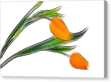 Spring Messenger Canvas Print