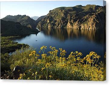 Spring Morning At The Lake Canvas Print