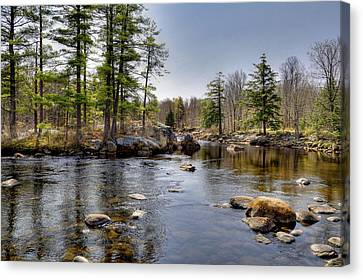 Canvas Print featuring the photograph Spring Near Moose River Road by David Patterson
