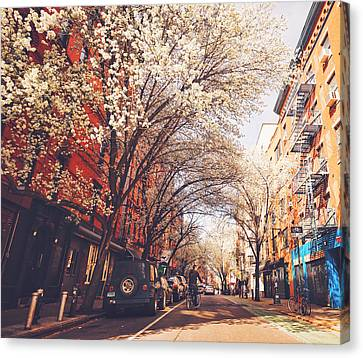 Spring - New York City - Lower East Side Canvas Print