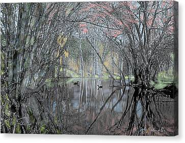 Spring On The Backwater Canvas Print